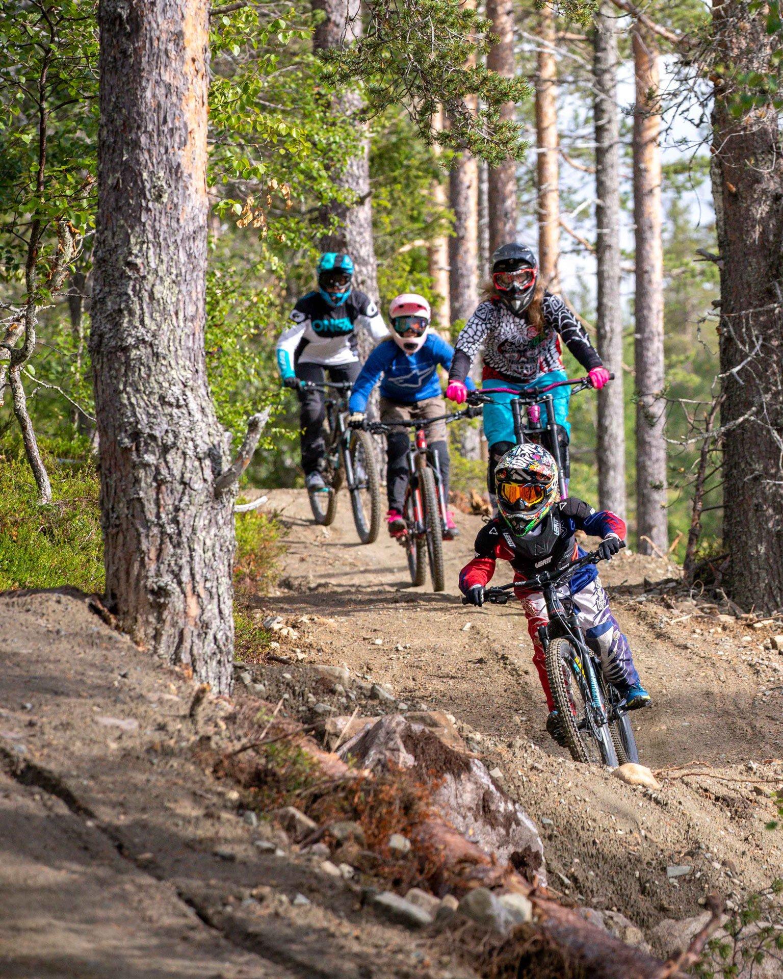 Levi_Bike_Park_woods